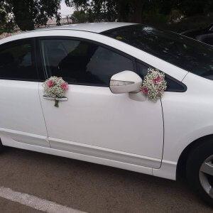 קישוטים לרכב חתונה גבסנית